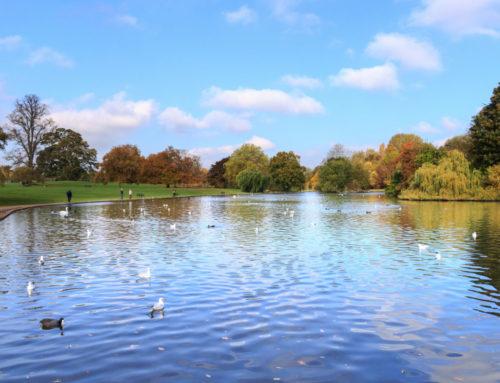 Heart-stirring Hertfordshire
