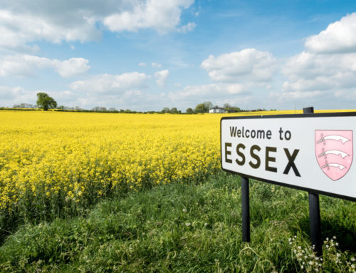 Extraordinary Essex